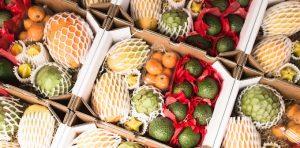 Exotic Fruit Box (caja)
