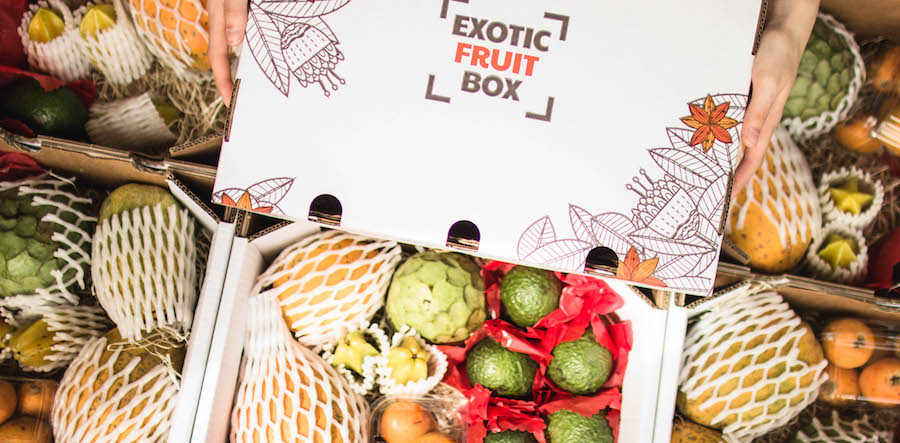Exotic Fruit Box (entrevista)