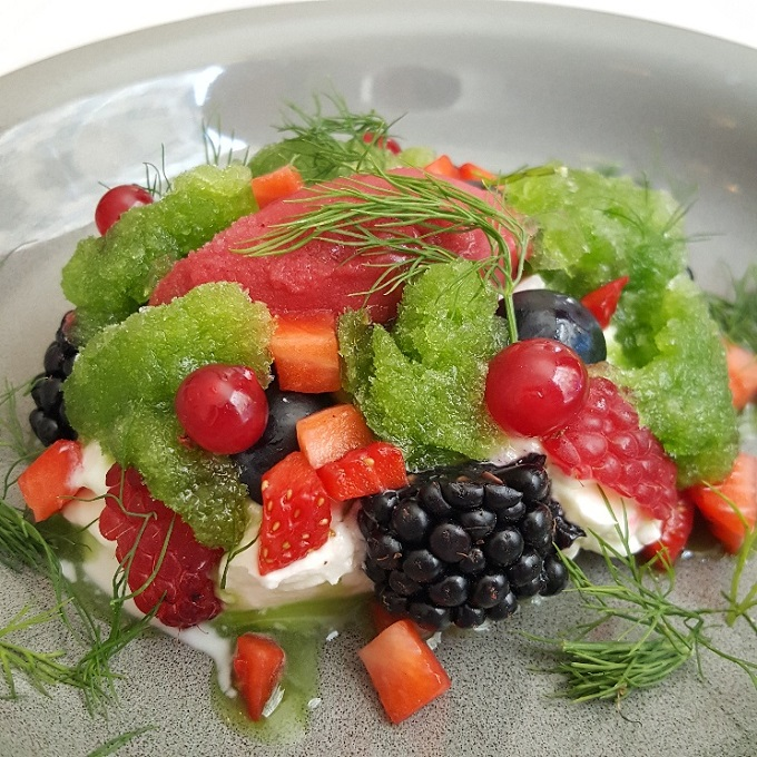 Altrapo (Frutas del bosque, yogurt griego y granizado de hierbas)