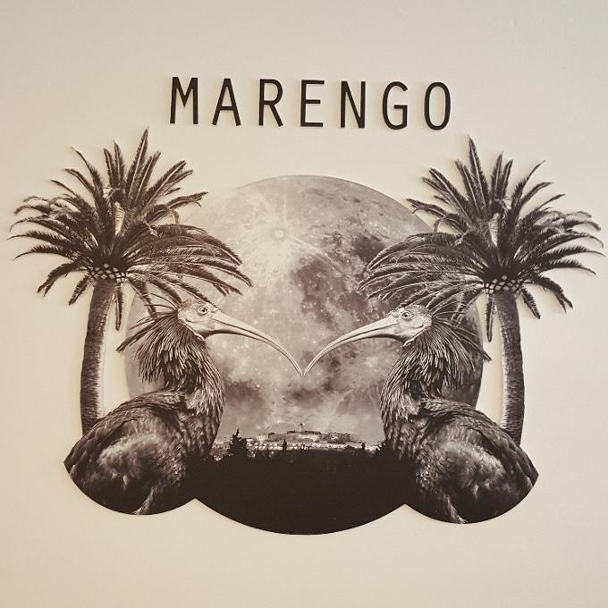 Marengo (Logo)